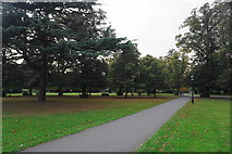 SU4212 : Late afternoon in East Park by Bill Boaden