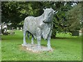 SO0451 : Bronze Bull at Builth Wells, Wales by Derek Voller