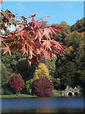 ST7733 : Stourton: autumnal colours at Stourhead by Chris Downer