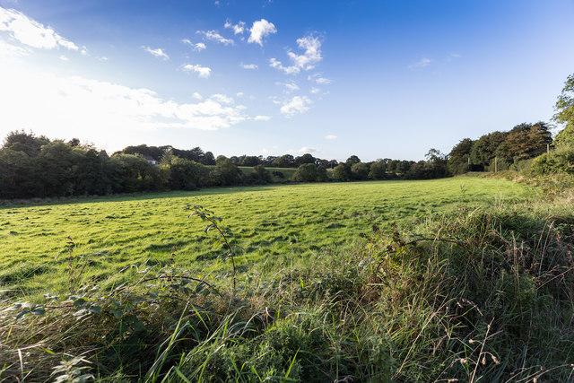 Field west of minor lane L2755