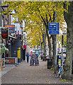 J3373 : Botanic Avenue, Belfast by Rossographer
