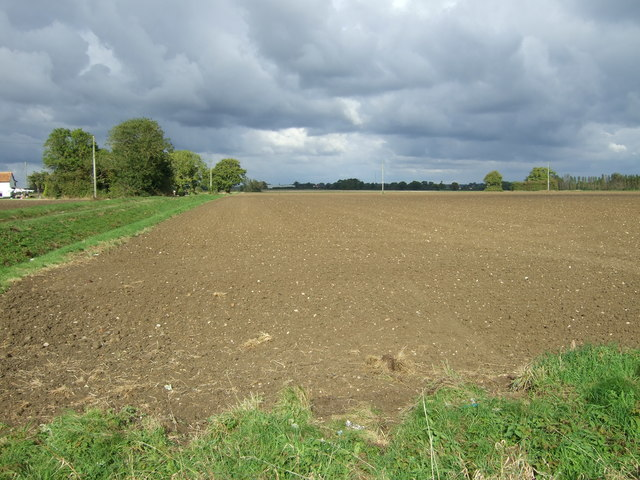 Field beside Green Lane