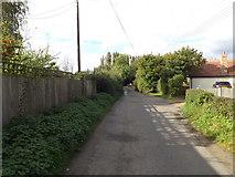 TM0591 : Fen Street, Old Buckenham by Adrian Cable