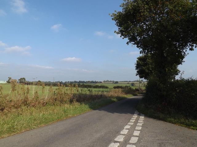 Dale Road, Wingfield