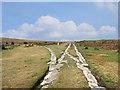 SX7677 : Stone Points, Haytor Tramway by Des Blenkinsopp