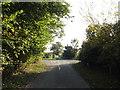 TM2481 : Watermill Lane, Weybread by Geographer