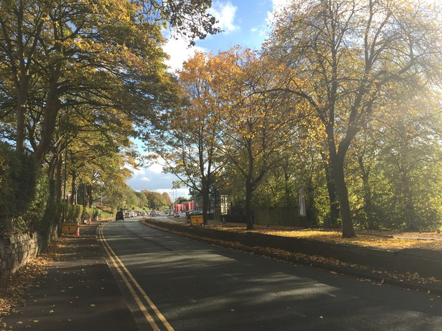Newcastle-under-Lyme: Newcastle Road