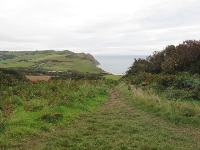 Coastal path near Seatown up to Golden Cap