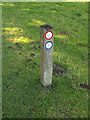 TL8161 : Marker Post at Ickworth Park by Adrian Cable