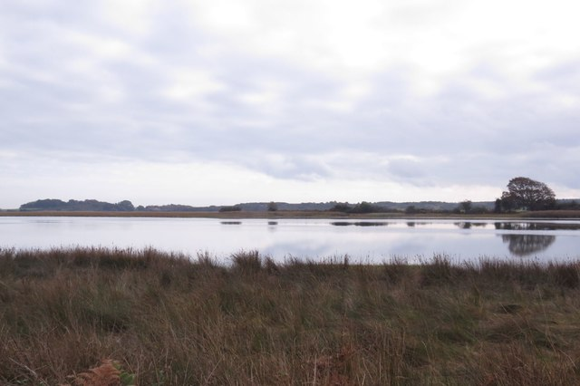 View of Middlebere Lake, Arne