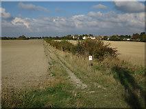 TL3142 : Track off Ashwell Street by Hugh Venables