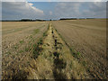 TL3241 : Field boundary on Limlow Hill by Hugh Venables