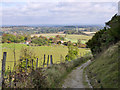 TQ3911 : Track down Offham Hill by Robin Webster