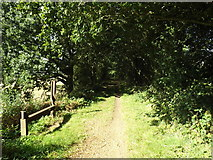 TG0723 : Marriott Way Path & Mile Marker Sculpture by Adrian Cable