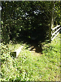 TG0723 : Steps & Path to Old Lane by Adrian Cable