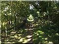TG0723 : Marriott's Way Bridge & Marriott's Way by Adrian Cable