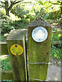 TG0822 : Footpath Marker on Marriott's Way by Geographer