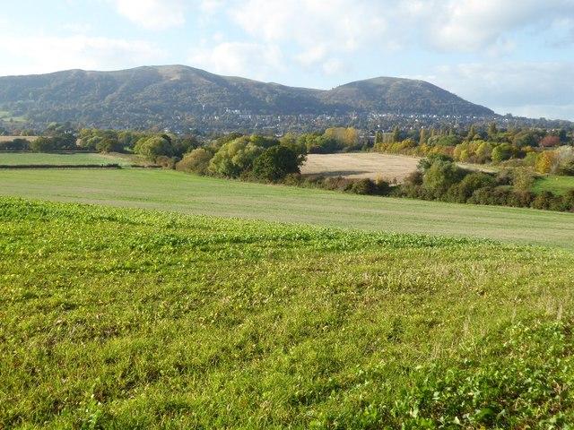 Malvern Hills viewed from Ox Hill