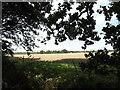 TG0723 : Farmland off Marriott's Way by Adrian Cable