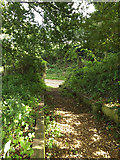 TG0723 : Steps to Old Lane by Adrian Cable
