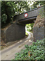 TG0723 : Marriott's Way Bridge & Old Lane by Adrian Cable