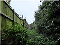 SJ8253 : Talke: public footpath between Walton Way and Lynn Avenue by Jonathan Hutchins