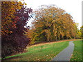 NZ3955 : Autumn colours in Backhouse Park, Sunderland by Malc McDonald