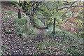 ST2198 : Path along hillside, near Crumlin by M J Roscoe