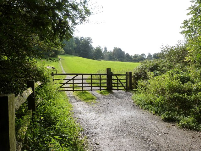 Woodland walk between Newton House and Dinefwr Castle