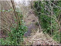 NS4762 : Former Potterhill Branch railway line by Thomas Nugent