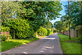 TQ3756 : High Drive by Ian Capper