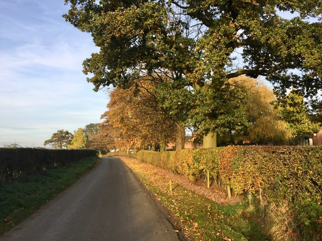 Autumn tints on Knowl Bank Road