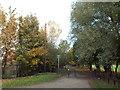 NZ3556 : Cycle and pedestrian path near South Hylton by Malc McDonald