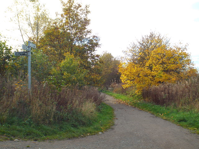 Cycle route and footpath near South Hylton