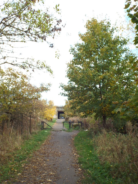 Shared cycle and pedestrian path near South Hylton