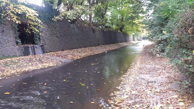 River Rea, Calthorpe