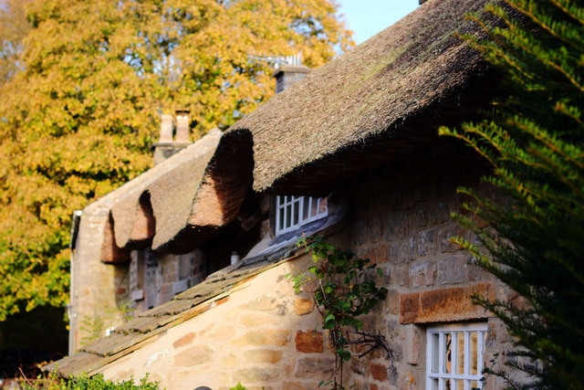Thatch in Baslow