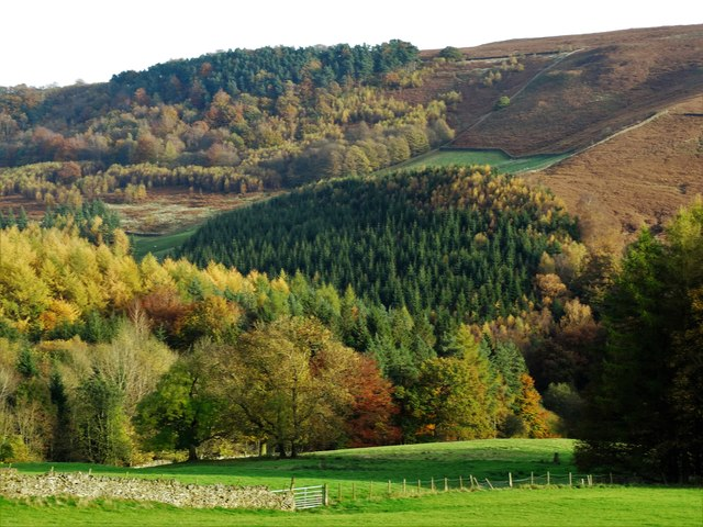 Autumn colours in Highlow Valley