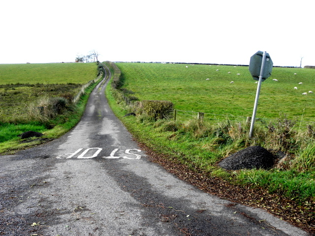 Ballymullarty Road by Kenneth  Allen