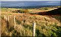 NY3137 : New fence, Potts Gill by Mick Garratt
