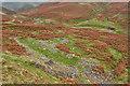 NY3036 : Ruins of Hay Gill Mine by Mick Garratt