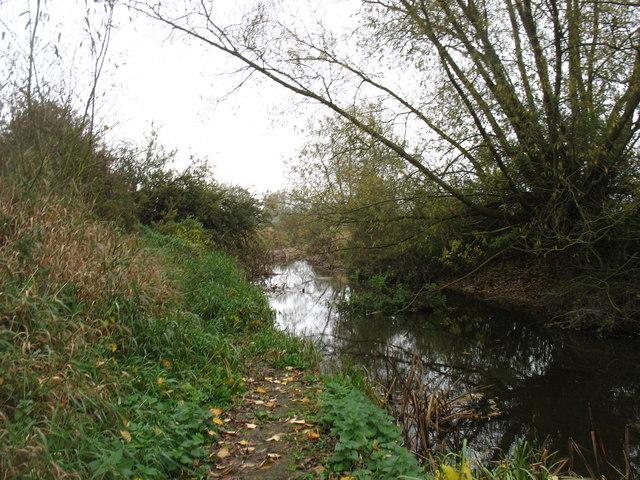 The infant River Thames