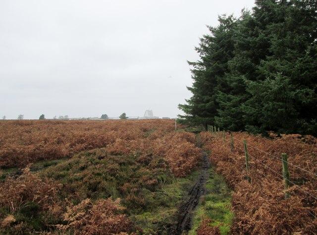 Bridleway  towards  RAF  Fylingdales