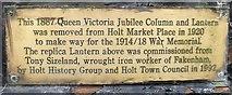 TG0738 : Jubilee memorial [2] by Michael Dibb