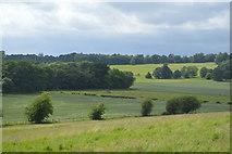 TQ5344 : Farmland, Penshurst estate by N Chadwick