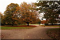 TA1131 : Autumn Colours in East Park, Hull by Ian S
