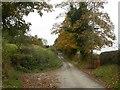 SJ8964 : Peover Lane by Graham Hogg