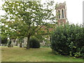 TL8918 : All Saints Church, Messing by Adrian Cable