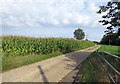 SK6613 : Driveway to Top Field Farm by Andrew Tatlow