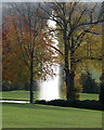SK2669 : Chatsworth: autumn leaves and The Emperor Fountain by John Sutton
